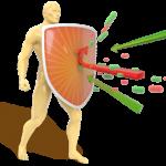 Probiotika zur Stärkung des Immunsystems